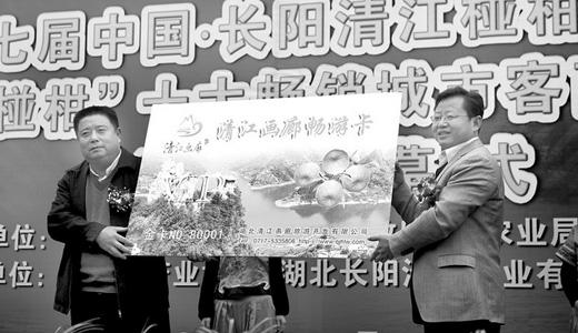 第七回長陽清江柑橘祭を開催